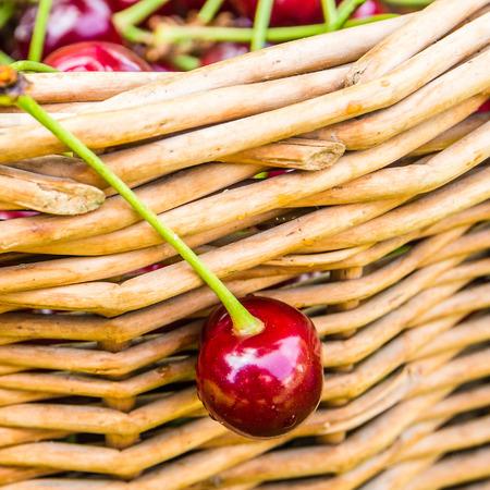 wicker work: one pie cherry hanging on wicker basket after summer harvest