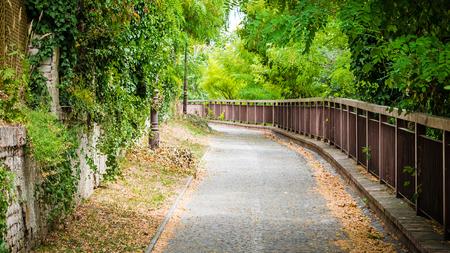 hand rails: walking through locust tree alley near medieval castle in Europe