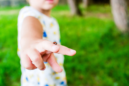 lady bug: closeup of lady bug walking on two fingers of young boy outdoors Stock Photo