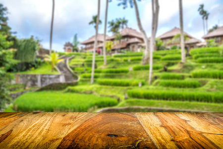 sfondo giungla: wooden front with balinese blurred jungle background, blurred rice fields and wooden bungalows, sisu wood Archivio Fotografico