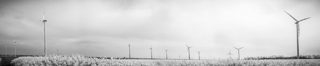 vignetting: many windmills rotating during windy spring cloudy day on yellow field with oil rape seed black and white with vignetting, panorama