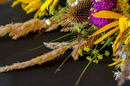 dried meadow flowers and petals laying on black textured background during golden hour light Imagens