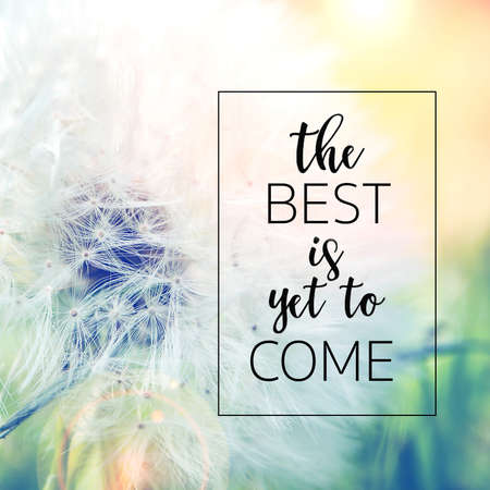 the best is yet to come quote with closeup view of dandelion on moody green and yellow background