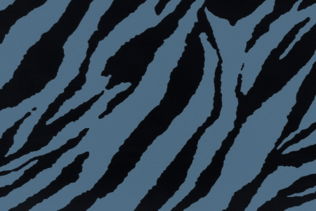 Denim zebra stripes for background photo