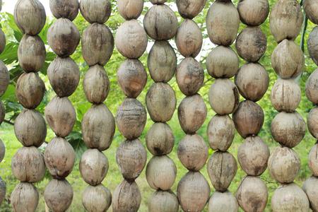 coconut wall texture Stock Photo