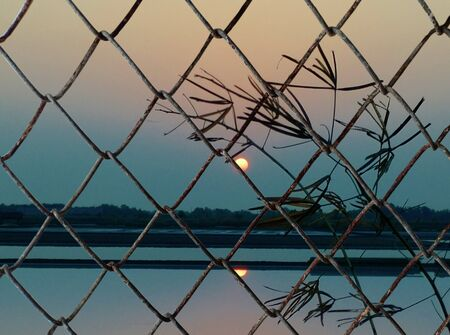 Decorative wire mesh of landscape background