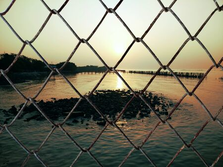 Decorative wire mesh of landscape background Standard-Bild