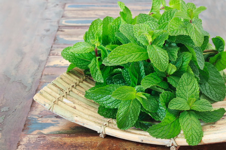Fresh mint  on wooden table copy space. Selective focus 免版税图像 - 31908830