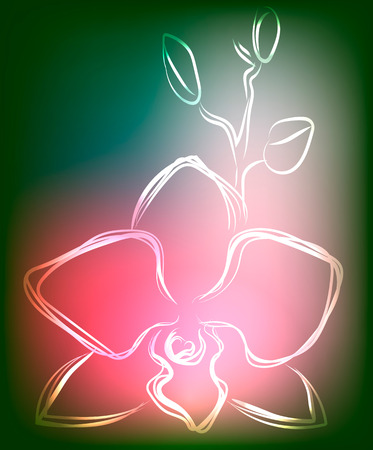 place to shine: Background with orchid in modern interesting colors, vector illustration Illustration