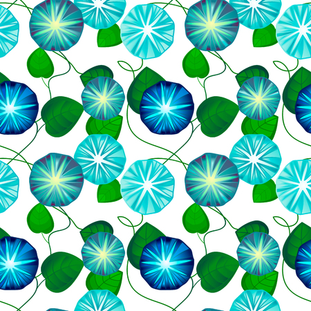 ipomoea: Seamless pattern with beautiful blue bindweed flowers, vector illustration