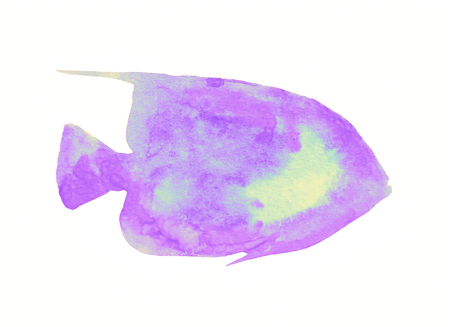 deep pink: Watercolor fish on white background Stock Photo