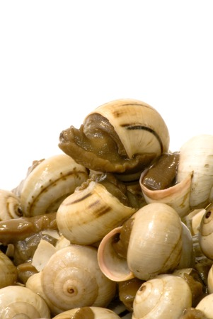 reloaded: Bowl of snails in garlic, typical plate of Spain and France, on white background Stock Photo