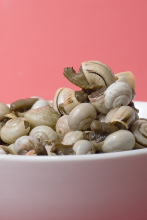 reloaded: Bowl of snails in garlic, typical plate of Spain and France, on red background