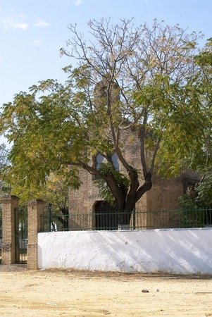vegatation: SEVILLE SPAIN - OCTOBER 4: Hermitage of virgin de Valme on October 4 2014 in Seville, Andalusia, Spain.