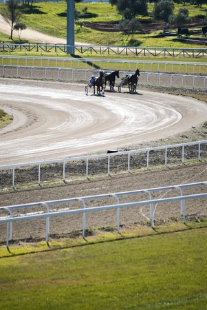 trotters: SEVILLE SPAIN - JANUARY 24: Horse Racing cars called Trotters on 24 January, in Seville, Andalucia, Spain