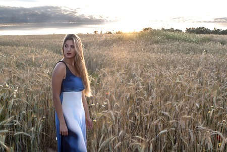 Beautiful blond woman in a wheat field at sunset  backlit Banco de Imagens