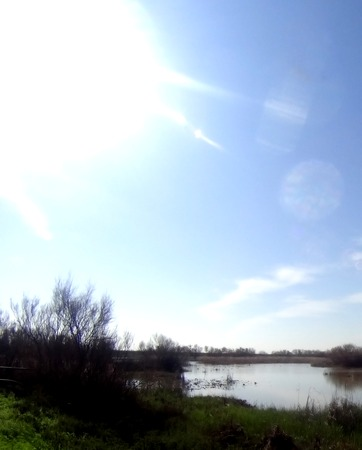 iluminado a contraluz: Vista panorámica de un lago con retroiluminación