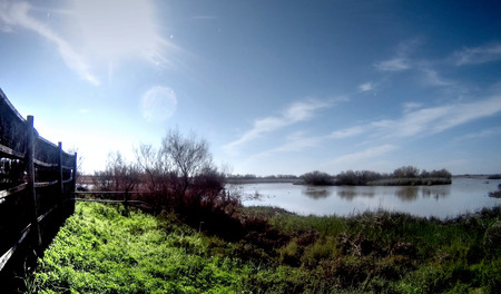 backlit: Panoramic view of a lake backlit