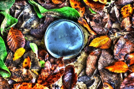 Fallen colorful autumn leaves and a rusty can on the ground Stock Photo