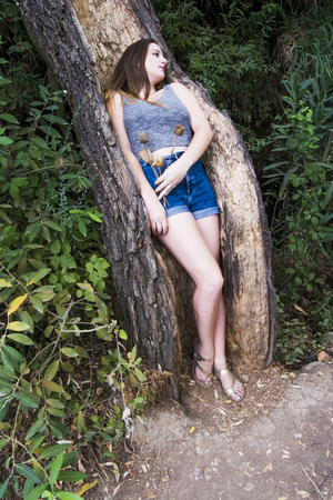 Beautiful woman sleeping in the hollow of a tree trunk