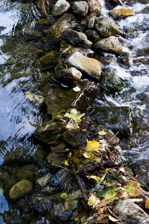 Landscape of a river in summer 版權商用圖片 - 131837011
