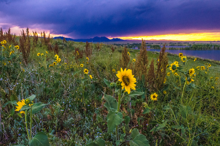 Sunset in Boulder, Colorado Stock Photo