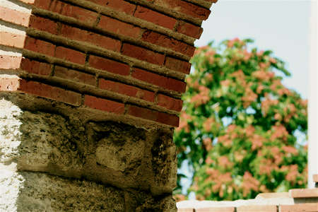 repetitious: The part of ancient arch with the brickwork and the flower bush on the backstage Stock Photo