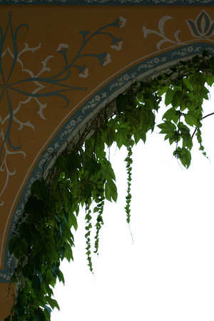 repetitious: The part of an Arch with the bulgarian pattern and ivy on it