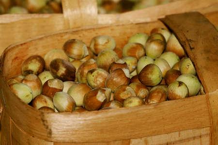 The busket full of hazelnuts