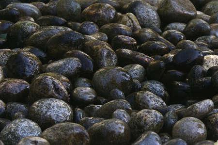 Group of wet stones Stock Photo