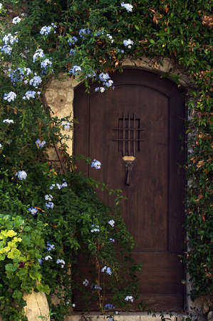 Rural door with the growing ivy and flowers