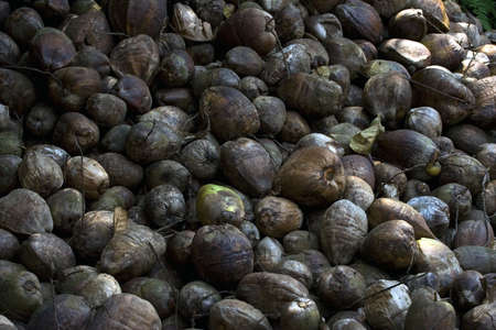 Background picture of tropical nuts Stock Photo