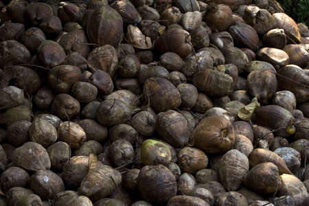 Large number of exotic fruits and nuts Stock Photo