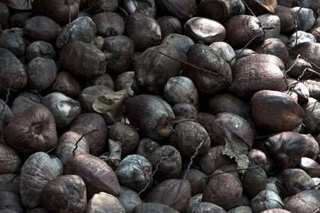 Group of exotic nuts Stock Photo
