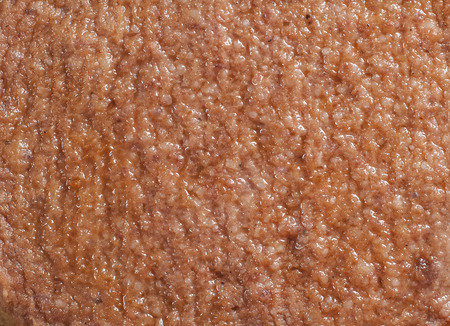 hamburger steak: Close-up of hamburger steak as food background texture