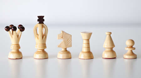 All six white chess pieces in a row on white background