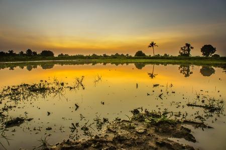 Beautiful landscape of sunset Stock Photo