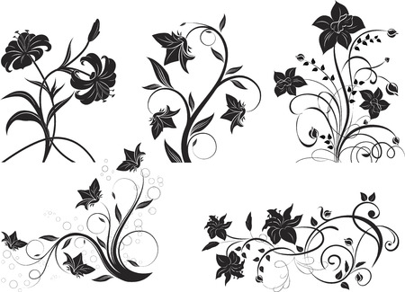 Floral design elements. Vector illustration. Suits well for design. Illustration