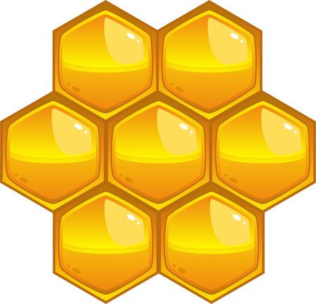 honeyed: Honeycomb, isolated on white, eps8 format