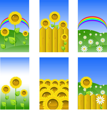 Set of elements for design, backgrounds with sunflowers and chamomile, vector illustrations, 8 format Stock Vector - 4315498