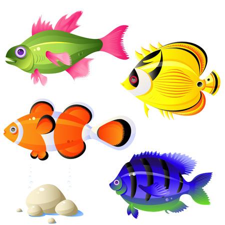 Van tropische vissen, stenen, bellen, vector, geïsoleerd op wit, 8-indeling