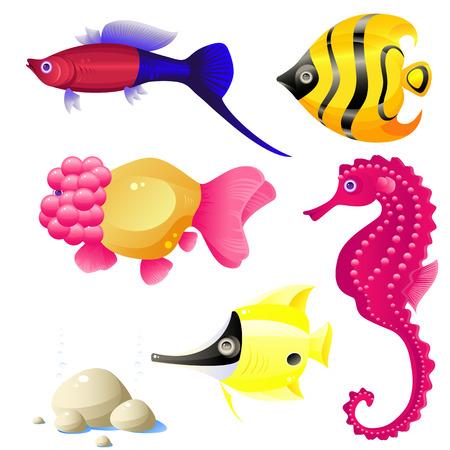 Conjunto de peces tropicales, piedras, burbujas, vector, aislado en blanco, formato eps 8