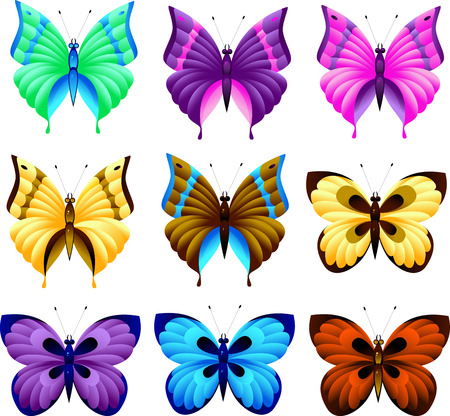 monarch: Set of butterfly, isolated on white, vector Illustration