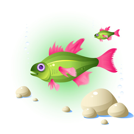 Fish, stones, bubbles, isolated on white, vector, 8 format Stock Vector - 4418592