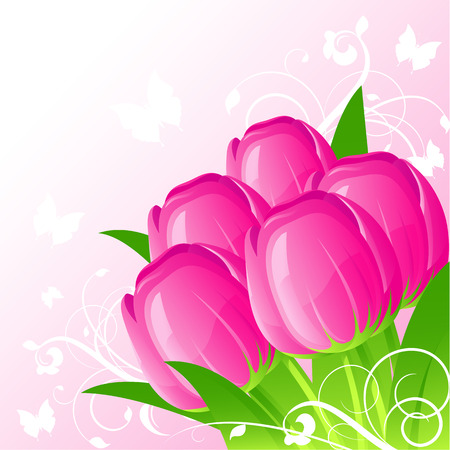 Background with pink tulips, vector, 8 format Vector