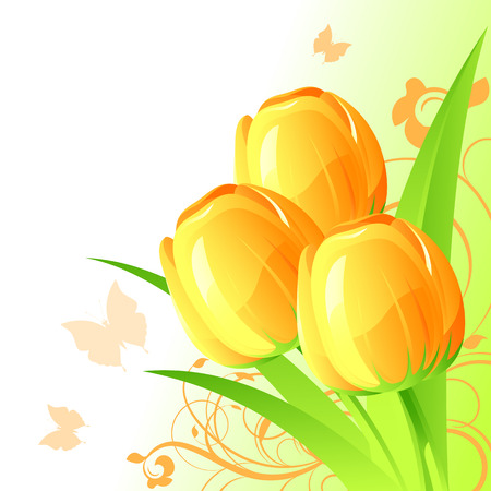 Background with yellow tulips, vector, 8 format Vector