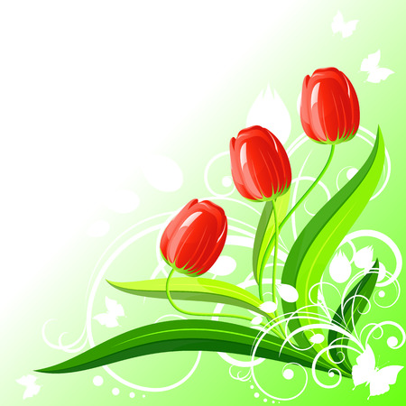 Background with red tulips, vector, 8 format Vector
