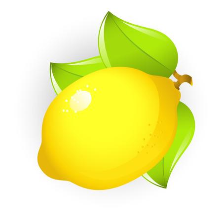 Vector afbeelding van citroen, geïsoleerde