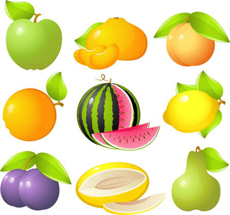 tangerine: Vector image of 9 delicious and sweet fruit: apple, tangerine, peach, orange, watermelon, lemon, plum, melon and pear! Isolated on white