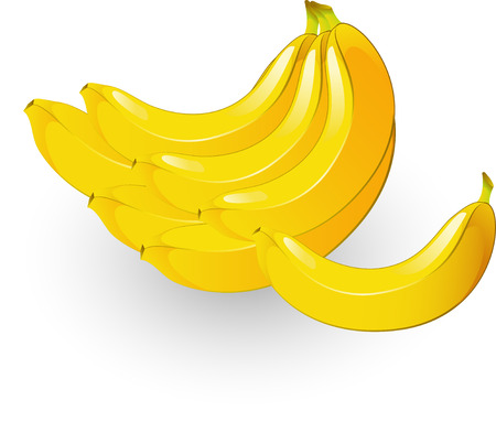 eaten: Vectors ripe bunch of bananas! Isolated on white Illustration